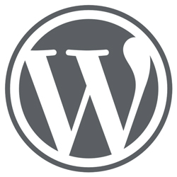 wordpress-specialist-in-hart-en-nieren